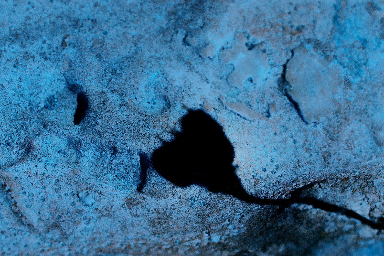 צללית קיץ על סלע בכחול