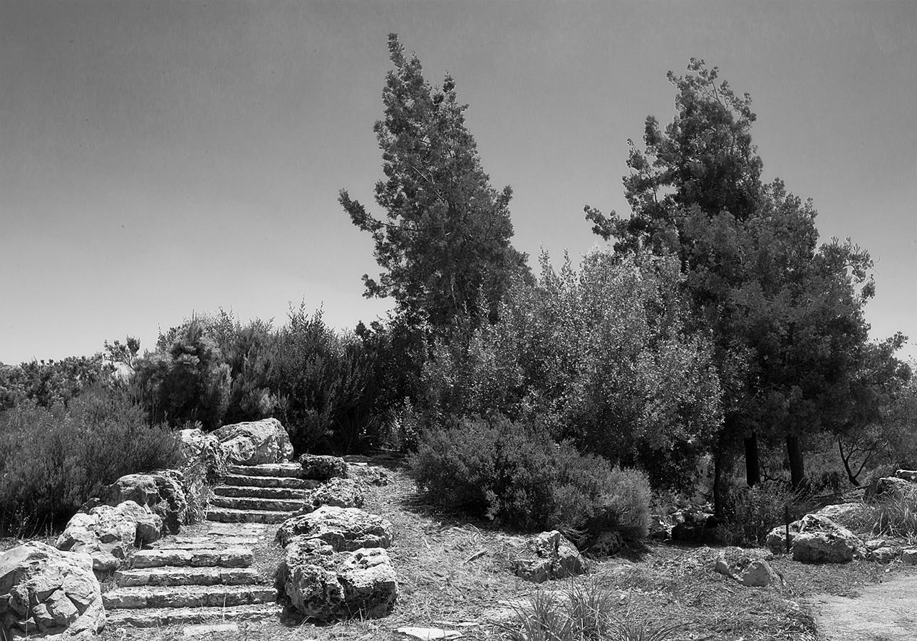 הגן הבוטני של האוניברסיטה העברית, ירושלים